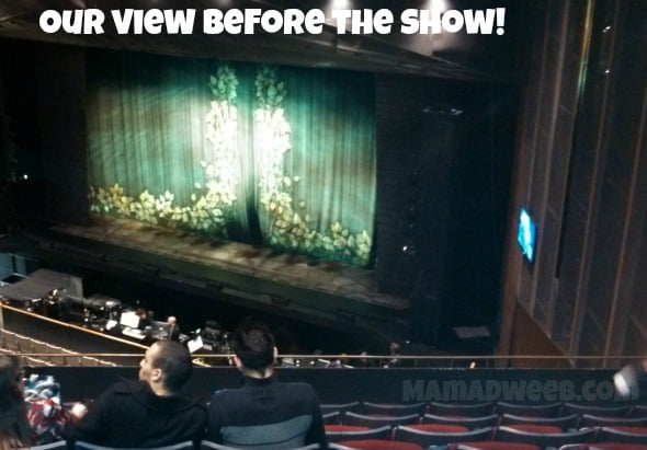 shrek musical view