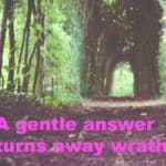 Gentle answer
