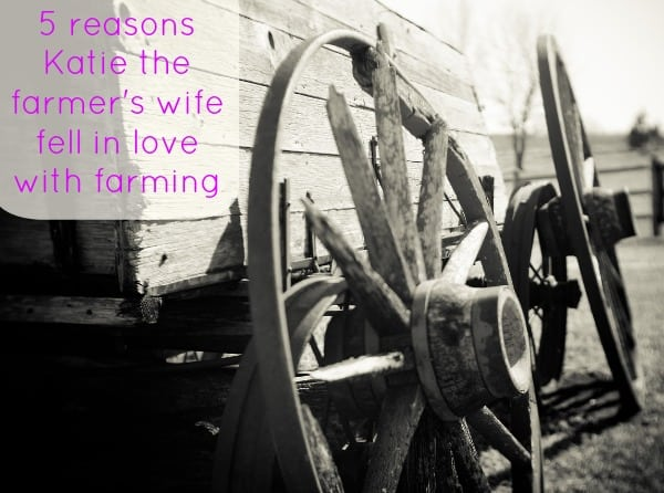 Why Katie loves farming
