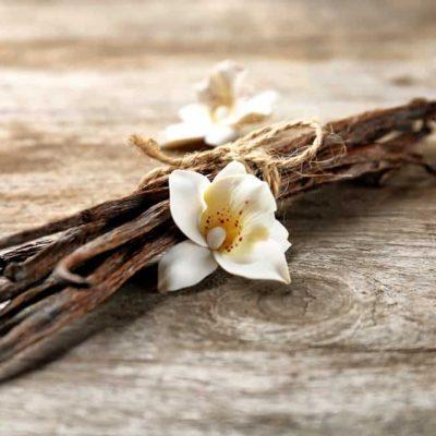 Vital, Versatile Vanilla! 4 Reasons It's Anything But Bland
