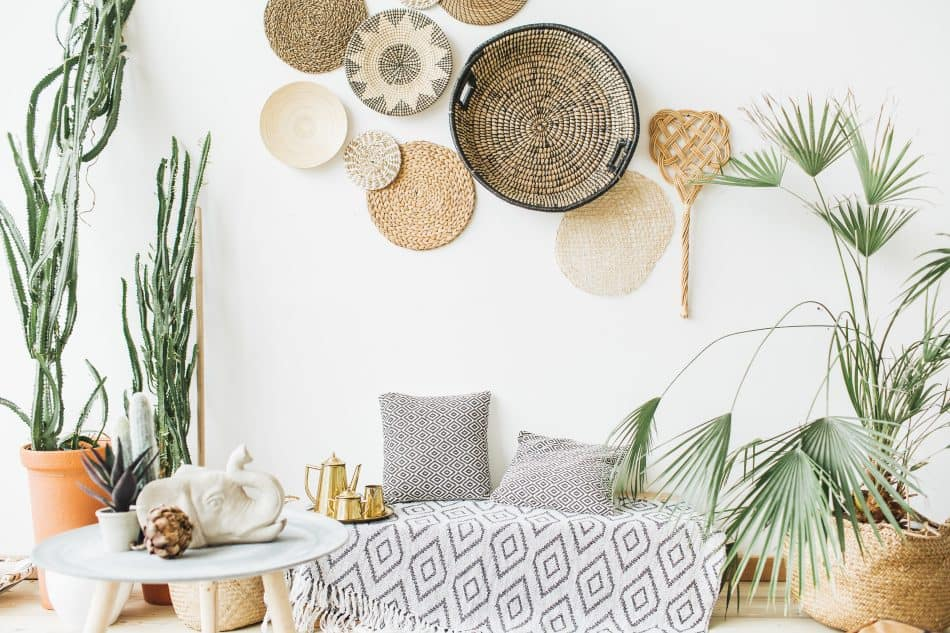 A minimal home decor with plants